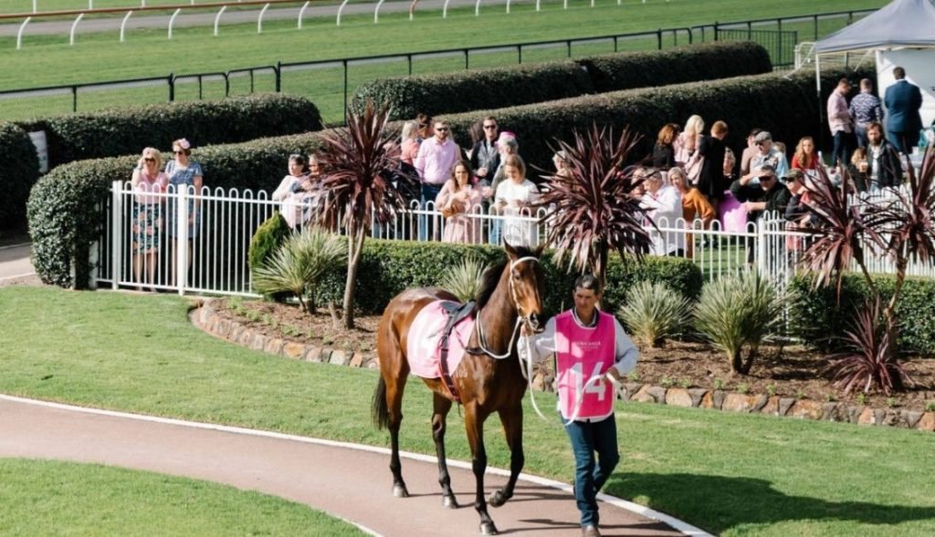 Newcastle Race Day – Goes Pink
